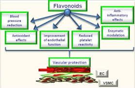 propolis brazilian propolis nano khasiat propolis www.manfaatpropolisgoodfit.wordpress.com 082218120457
