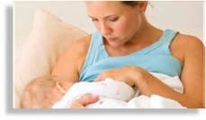 manfaat propolis untuk ibu menyusui 081312991066